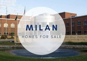 Milan IL Homes for Sale